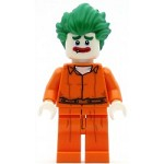 LEGO Collectible Minifigures The LEGO Batman Movie Arkham Asylum Joker - Minifig Only