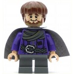 LEGO Hobbit and Lord of the Rings Minifigure Ori the Dwarf